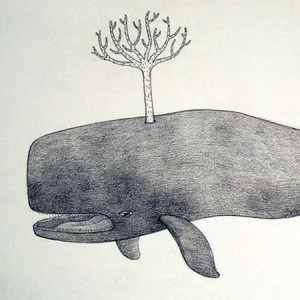 Tree Whale and other drawings